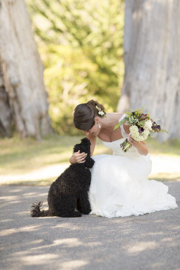 O melhor amigo do homem merece participar do seu Casamento.